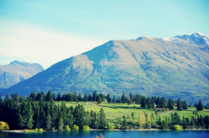 What it's like to be a New Zealand expat